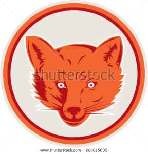stock-vector-illustration-of-an-angry-fox-wild-dog-wolf-head-facing-front-set-inside-circle-on-isolated-white-223815685