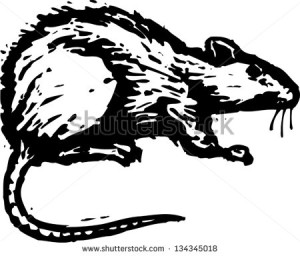 stock-vector-black-and-white-vector-illustration-of-a-rat-134345018